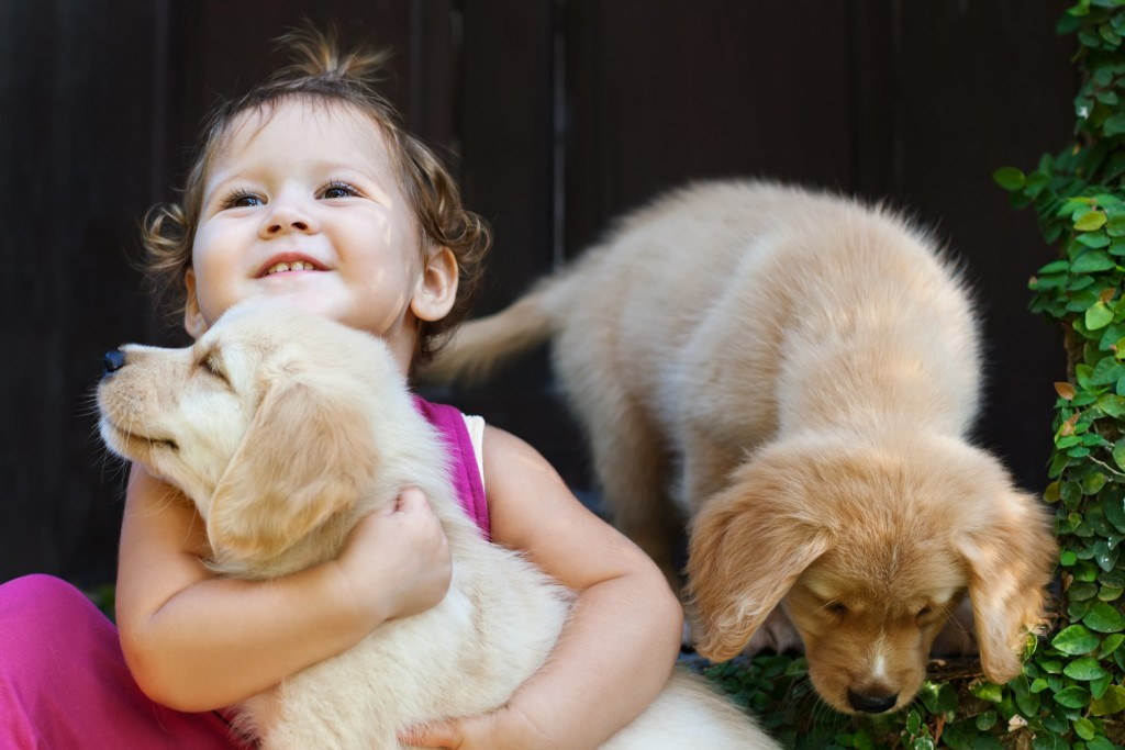 baby playing with doggos