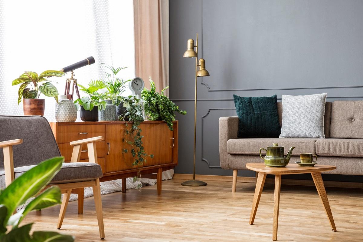 modern livingroom with plants